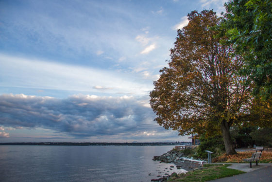 Seasons Are Changing At Boulevard Park