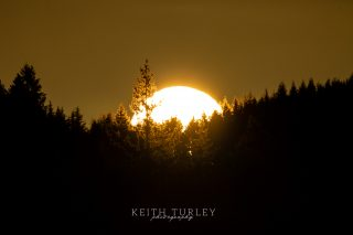 First Light by Keith Turley